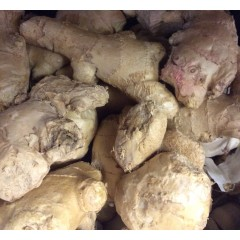Loose Ginger 150g
