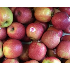 Pink Lady Apple each