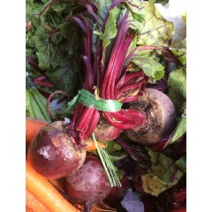 Bunch beetroot