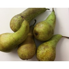 Conference pears. Each