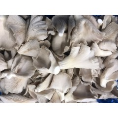 Oyster mushrooms 125 g