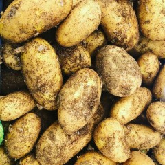 Local potatoes 25 kilo