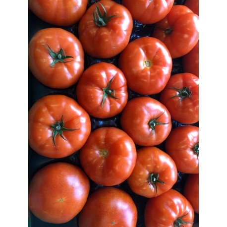 Beef tomatoes each
