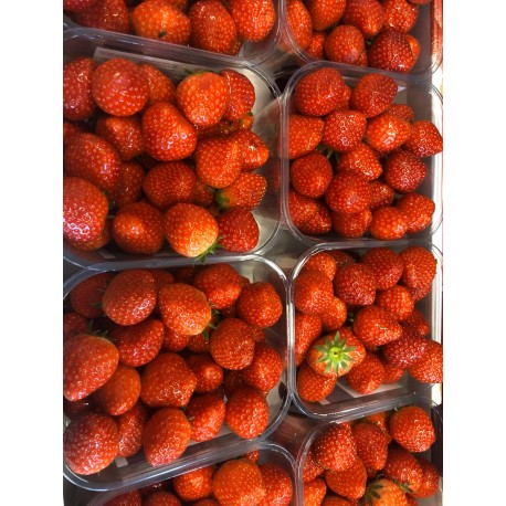 Belguim strawberries 500 g