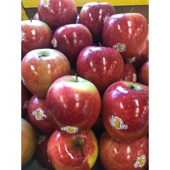 Joya red apple each