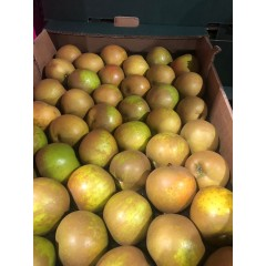 English russets each