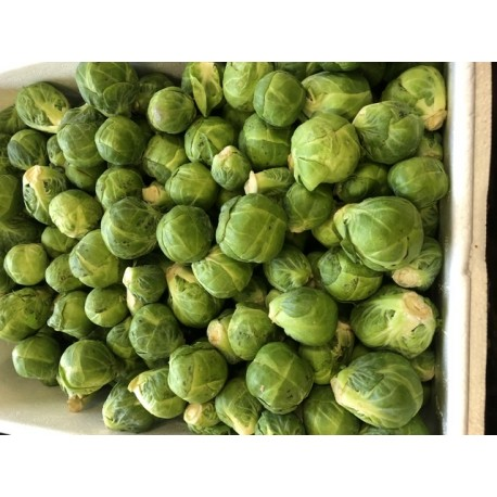 Sprouts 500 g