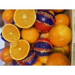 Blood oranges 4 for £2