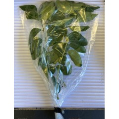 Curry leaves per pack