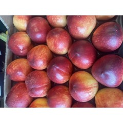 Nectarines 4 for £2