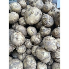 Lincoln new potatoes 500 g