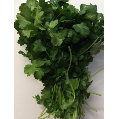 Fresh coriander. 180g bunch