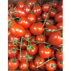 Loose cherry vine tomatoes