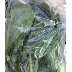 Spring Cabbage each
