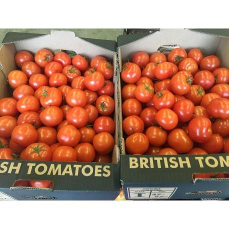 Yorkshire tomatoes 500g