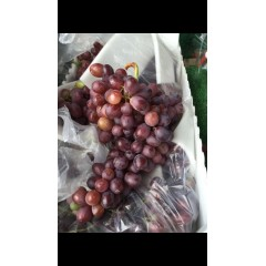 Seedless Red Grapes 500 g