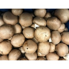 Chestnut mushrooms 250 g